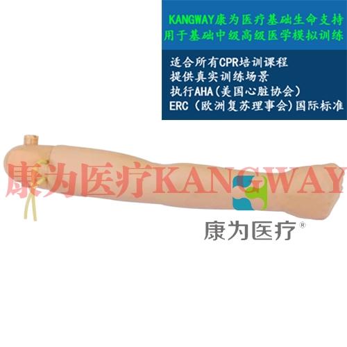 """""""康为医疗""""高级手臂血压测量模型(与心肺复苏模型配套使用)"""