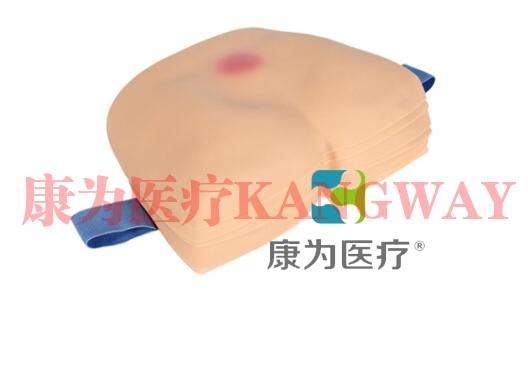 """""""康为医疗""""高级褥疮护理模型(6件套)"""