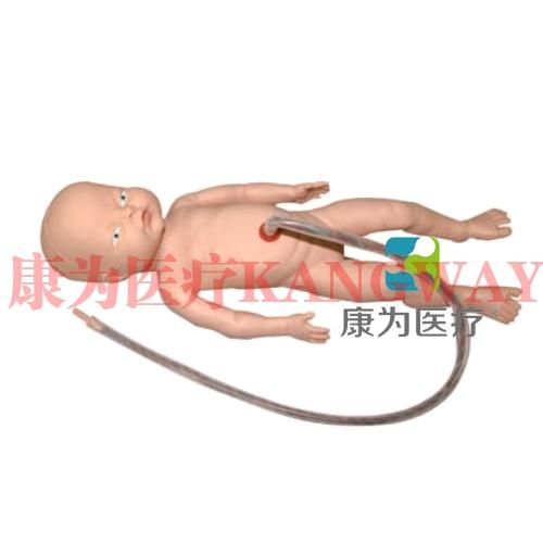 """""""康为医疗""""高级出生婴儿脐带护理模型(男婴)脐带护理标准化模拟病人(男婴)"""