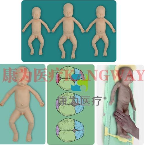 """""""康为医疗""""新生儿生长发育指标测量仿真模型"""