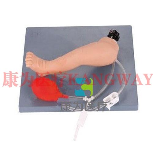 """""""康为医疗""""高级婴儿下肢动脉穿刺模型"""
