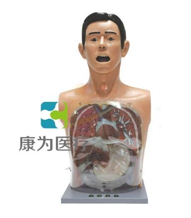 """""""康为医疗""""高级透明洗胃训练模型"""