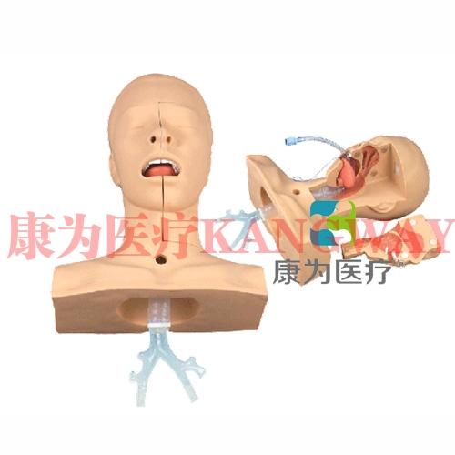 """""""康为医疗""""高级吸痰操作练习模型(可用真实负压吸痰器进行吸痰操作)"""