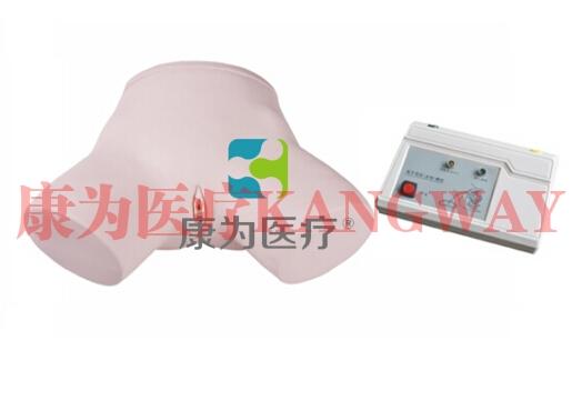 """""""康为医疗""""电子女性导尿模型"""