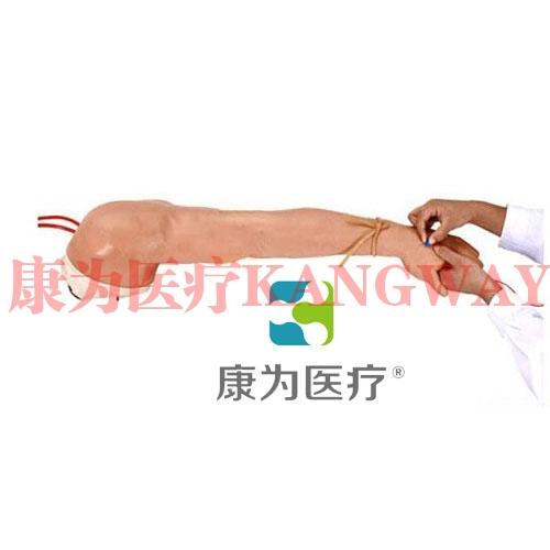"""""""康为医疗""""高级精装静脉注射及穿刺训练左手臂模型"""