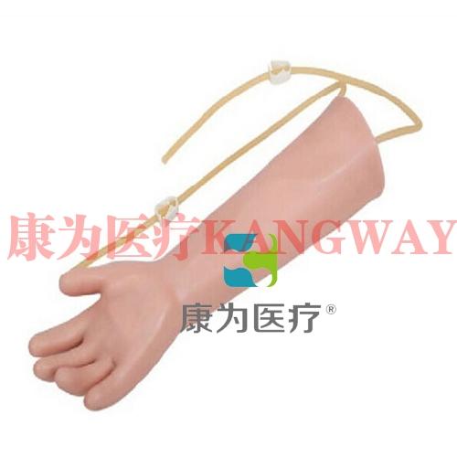 """""""康为医疗""""高级儿童手臂静脉穿刺训练模型"""