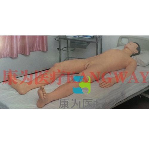 """""""康为医疗""""综合穿刺术仿真训练系统(胸膜腔、腰椎、骨髓、心包)"""