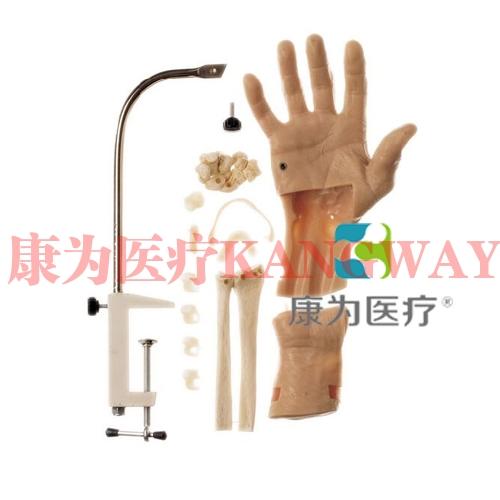 """""""康为医疗""""腕关节镜检查模型,腕关节镜检查操作模型 Wrist Arthroscopy Model"""