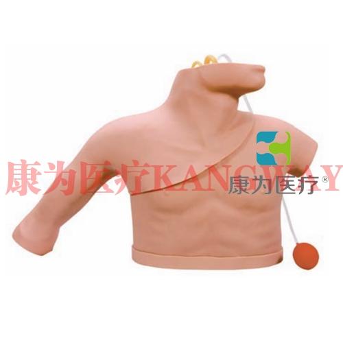 """""""康为医疗""""中心静脉穿刺插管训练模型,LF01012U中心静脉穿刺置管操作模型 Heart Catheterization Simulator,心脏导管插入训练(动静脉伴行)模型"""
