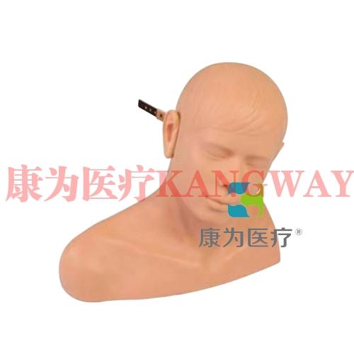 """""""康为医疗""""耳诊断模型"""