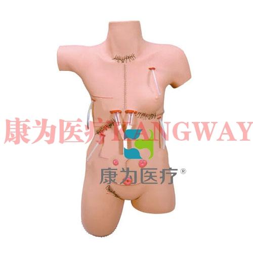 """""""康为医疗""""外科缝合包扎清创训练模型,外科清创缝合展示模型"""