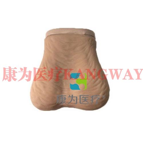 """""""康为医疗""""睾丸检查模型,睾丸检查操作模型(I型)"""
