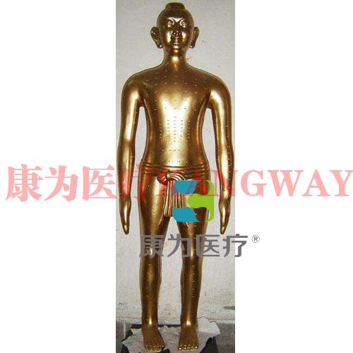 """""""康为医疗""""166cm仿古针灸铜 人针灸铜人 铜人针灸模型 """