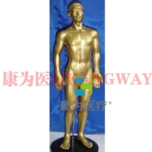 """""""康为医疗""""50CM铜人针灸穴位模型"""