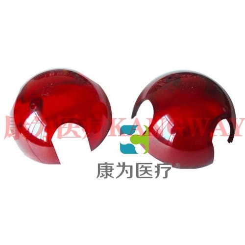 """""""康为医疗""""半球鼠玩具"""
