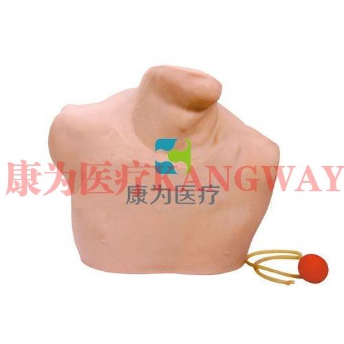 中心静脉穿刺插管操作模型