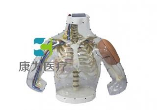 """""""康为医疗""""高级上臂肌内注射操作及对比模型"""