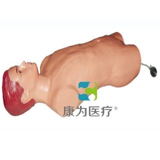 """""""康为医疗""""股动脉穿刺标准化模拟病人,股动脉穿刺模型"""