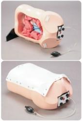 """""""康为医疗""""M40结肠镜训练模型(消化内科技能模型)"""