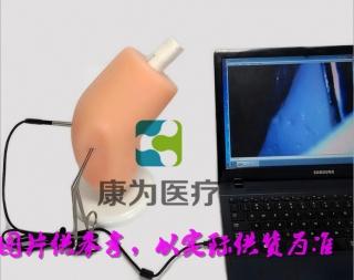 """""""康为医疗""""骨科医生膝关节镜手术模拟训练器"""