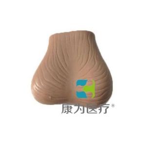 """""""康为医疗""""睾丸检查模型,睾丸检查操作模型(II型)"""