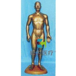 """""""康为医疗""""68全皮肤铜色人体针灸模型/标准针灸穴位模型 /针灸铜人/人体针灸模型"""
