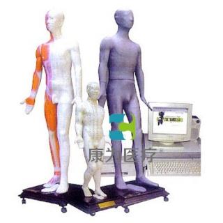 """""""康为医疗""""光电感应键控人体针灸穴位发光模型"""