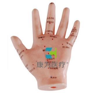 """""""康为医疗""""手针灸模型13CM"""