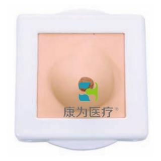 """""""康为医疗""""乳房检查模型,乳房纤维腺瘤检查模型,乳房检查操作模型"""