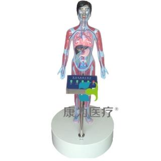 """""""康为医疗""""LED互动吸毒体验装置(吸毒者人体血液器官变化系统)五键"""