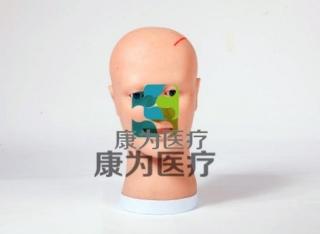 """""""康为医疗"""" 脑室引流护理模型, 脑室引流术后护理操作模型"""
