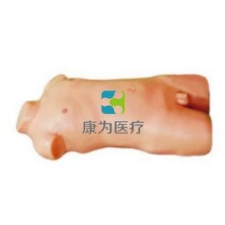 """""""康为医疗""""儿童胸腔穿刺模型(升级版)"""