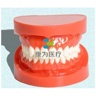 """""""康为医疗""""正常大小口腔护理操作模型"""