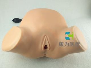 """""""康为医疗""""妇产科四步触诊肛查阴道检查监测考核指导模型,高级腹部触诊、分娩机转综合模型"""
