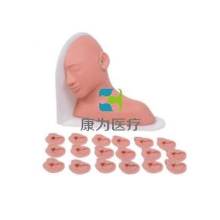 """""""康为医疗""""高级耳部检查模型,高级耳部检查模型(14种、19种、25种病变)"""